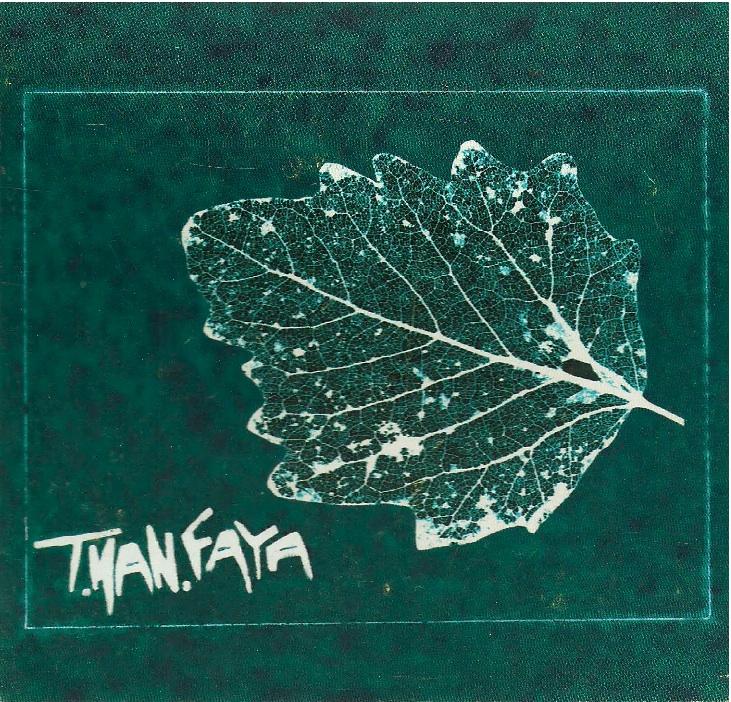 tmanfaya copertina_front