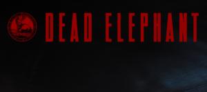 dead elephant2